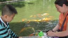 Kunming10
